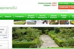 pepiniera plante ornamentale