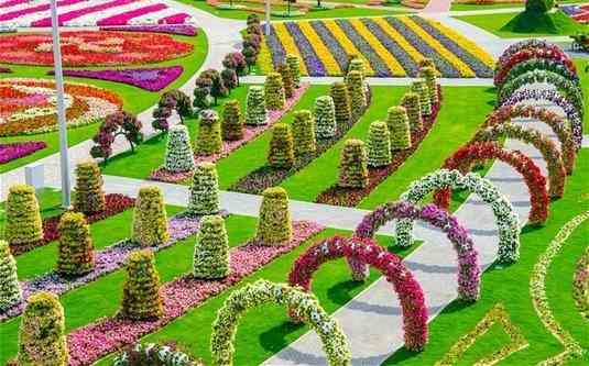 gradina-cu-flori